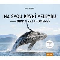 Seznamte se s velrybami a dalšími obyvateli moře